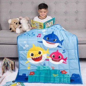 Franco Bedding Super Soft Plush Kids Weighted Blanket